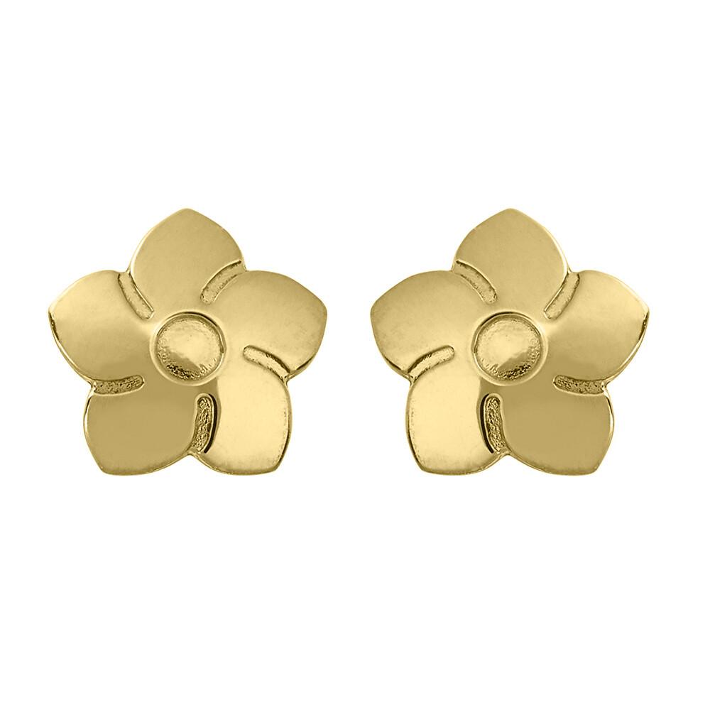 Photo de Boucles d'oreilles fleurs - Vis - Or jaune 9ct